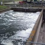 sewage settling pond